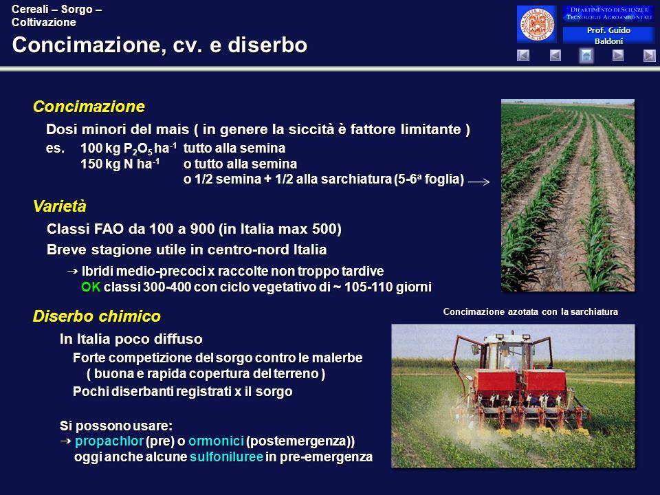 Prof. Guido Baldoni Prof. Guido Baldoni Concimazione, cv. e diserbo Diserbo chimico In Italia poco diffuso Forte competizione del sorgo contro le male
