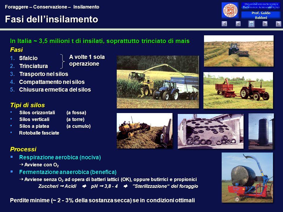 Prof. Guido Baldoni Prof. Guido Baldoni Fasi dellinsilamento In Italia ~ 3,5 milioni t di insilati, soprattutto trinciato di mais Fasi 1.Sfalcio 2.Tri