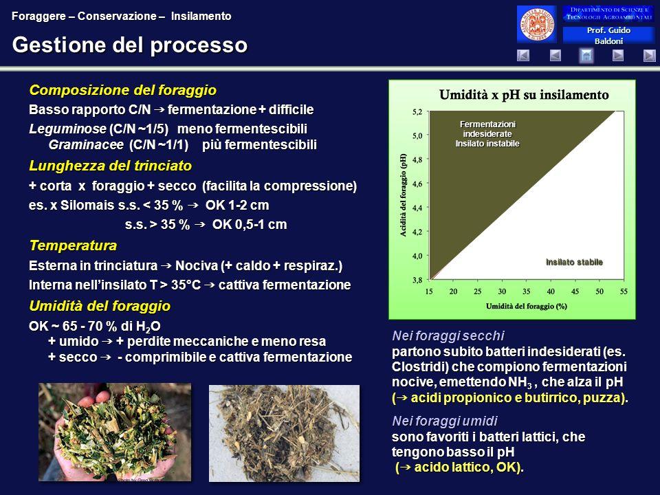 Prof. Guido Baldoni Prof. Guido Baldoni Gestione del processo Composizione del foraggio Basso rapporto C/N fermentazione + difficile Leguminose (C/N ~