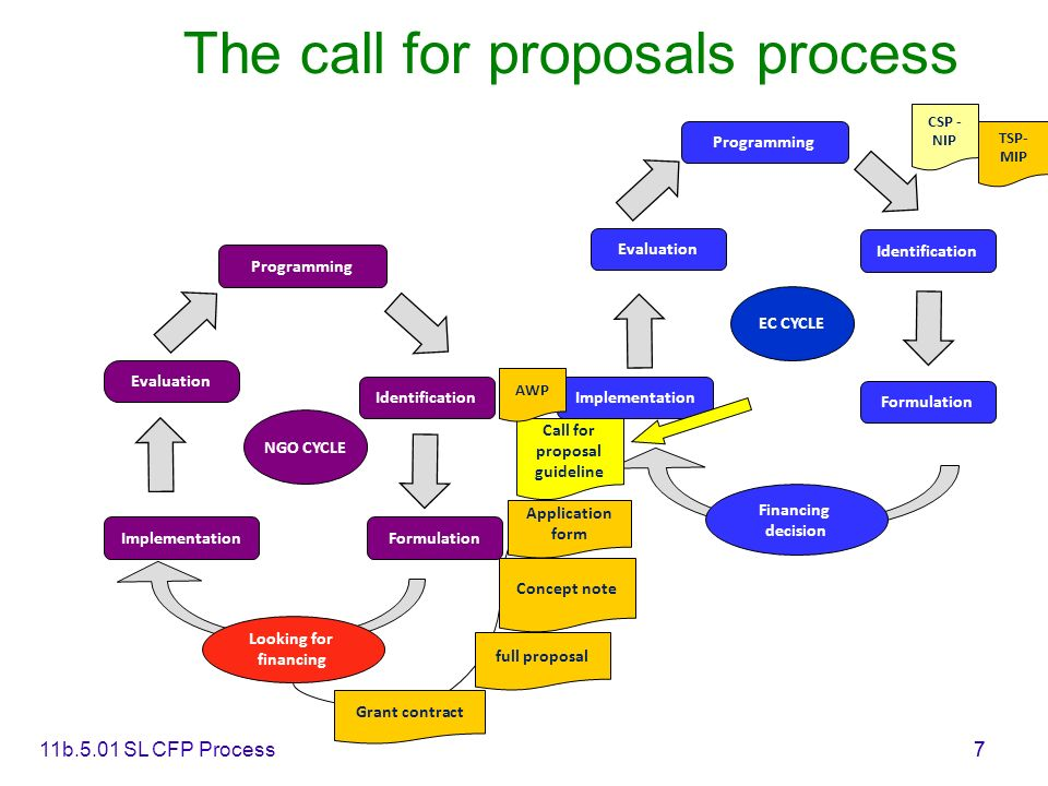 11b.5.01 SL CFP Process7 7 The call for proposals process Programming Formulation Identification Implementation Evaluation Financing decision Programm