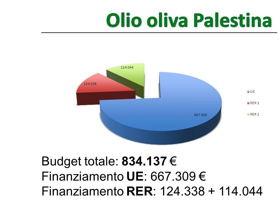 Budget totale: 834.137 Finanziamento UE: 667.309 Finanziamento RER: 124.338 + 114.044 _____________________________________________________________