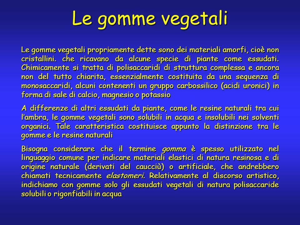 Le gomme vegetali Le gomme vegetali propriamente dette sono dei materiali amorfi, cioè non cristallini. che ricavano da alcune specie di piante come e