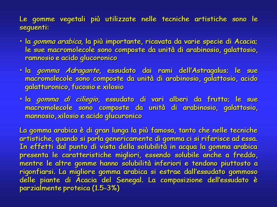 Le gomme vegetali più utilizzate nelle tecniche artistiche sono le seguenti: la gomma arabica, la più importante, ricavata da varie specie di Acacia; le sue macromolecole sono composte da unità di arabinosio, galattosio, ramnosio e acido glucoronicola gomma arabica, la più importante, ricavata da varie specie di Acacia; le sue macromolecole sono composte da unità di arabinosio, galattosio, ramnosio e acido glucoronico la gomma Adragante, essudato dai rami dellAstragalus; le sue macromolecole sono composte da unità di arabinosio, galattosio, acido galatturonico, fucosio e xilosiola gomma Adragante, essudato dai rami dellAstragalus; le sue macromolecole sono composte da unità di arabinosio, galattosio, acido galatturonico, fucosio e xilosio la gomma di ciliegio, essudato di vari alberi da frutto; le sue macromolecole sono composte da unità di arabinosio, galattosio, mannosio, xilosio e acido glucuronicola gomma di ciliegio, essudato di vari alberi da frutto; le sue macromolecole sono composte da unità di arabinosio, galattosio, mannosio, xilosio e acido glucuronico La gomma arabica è di gran lunga la più famosa, tanto che nelle tecniche artistiche, quando si parla genericamente di gomma ci si riferisce ad essa.