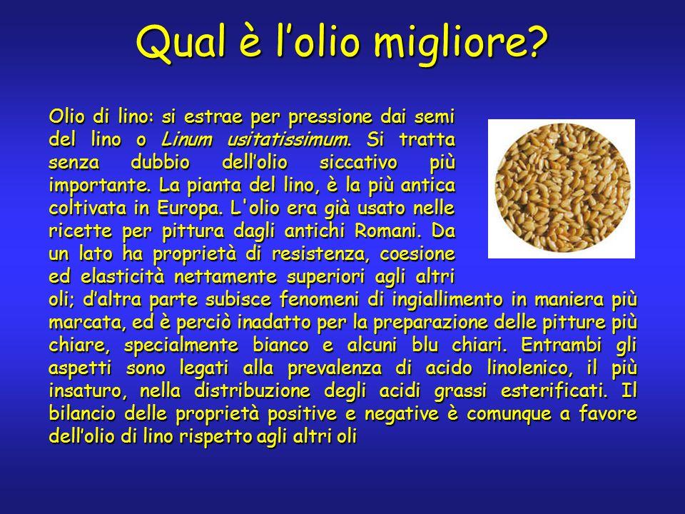 Qual è lolio migliore? Olio di lino: si estrae per pressione dai semi del lino o Linum usitatissimum. Si tratta senza dubbio dellolio siccativo più im