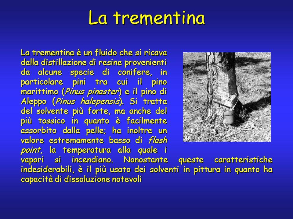 La trementina La trementina è un fluido che si ricava dalla distillazione di resine provenienti da alcune specie di conifere, in particolare pini tra cui il pino marittimo (Pinus pinaster) e il pino di Aleppo (Pinus halepensis).