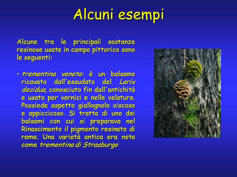 Alcuni esempi Alcune tra le principali sostanze resinose usate in campo pittorico sono le seguenti: trementina veneta: è un balsamo ricavato dall'essu
