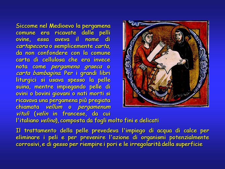 Siccome nel Medioevo la pergamena comune era ricavate dalle pelli ovine, essa aveva il nome di cartapecora o semplicemente carta, da non confondere co