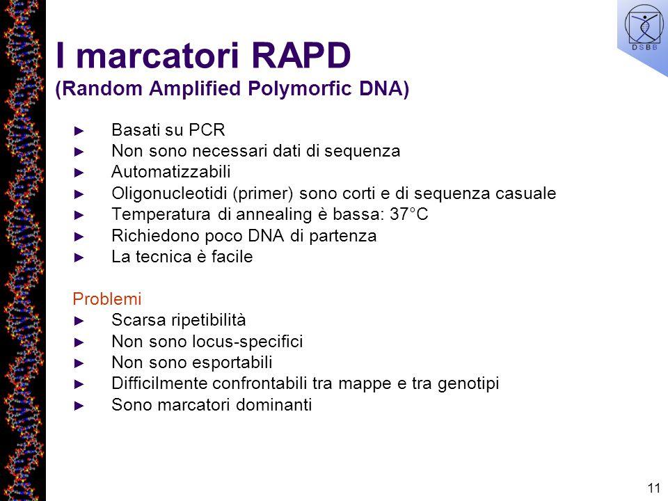 11 I marcatori RAPD (Random Amplified Polymorfic DNA) Basati su PCR Non sono necessari dati di sequenza Automatizzabili Oligonucleotidi (primer) sono