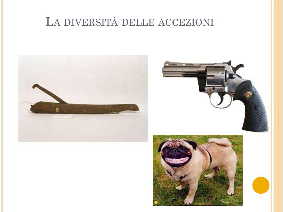 L A DIVERSITÀ DELLE ACCEZIONI