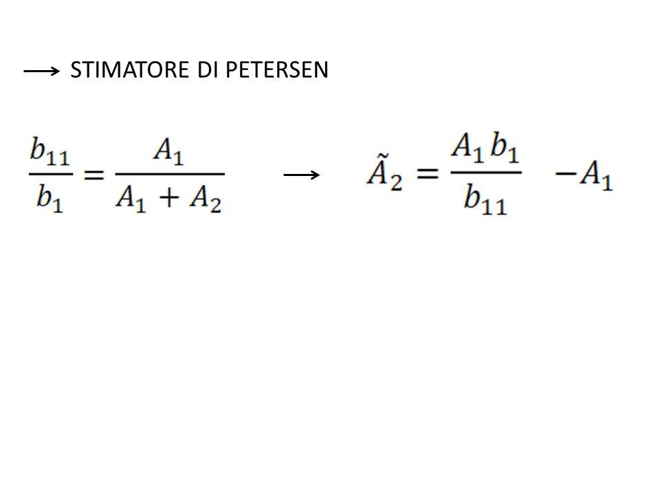 STIMATORE DI PETERSEN