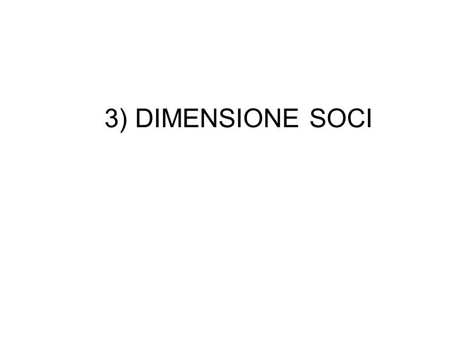 3) DIMENSIONE SOCI PMI GRANDI