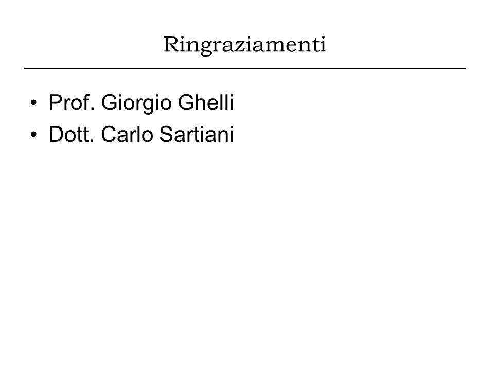 Prof. Giorgio Ghelli Dott. Carlo Sartiani Ringraziamenti