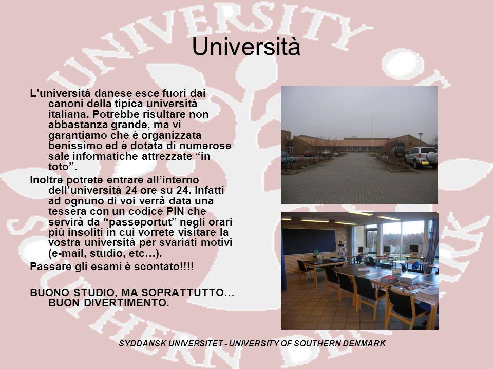 SYDDANSK UNIVERSITET - UNIVERSITY OF SOUTHERN DENMARK Università Luniversità danese esce fuori dai canoni della tipica università italiana.