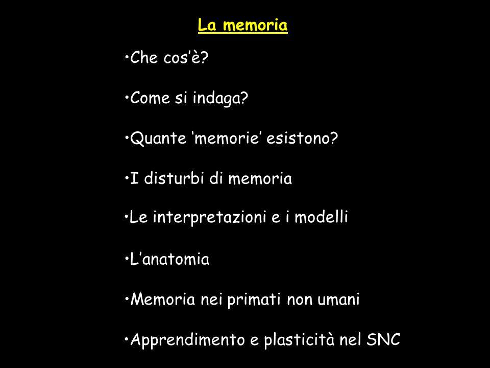 La memoria Che cosè? Quante memorie esistono? Come si indaga? I disturbi di memoria Le interpretazioni e i modelli Lanatomia Memoria nei primati non u