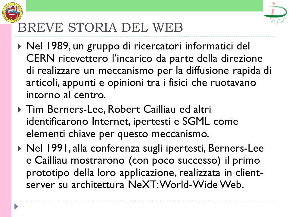 BREVE STORIA DEL WEB Nel 1989, un gruppo di ricercatori informatici del CERN ricevettero lincarico da parte della direzione di realizzare un meccanismo per la diffusione rapida di articoli, appunti e opinioni tra i fisici che ruotavano intorno al centro.