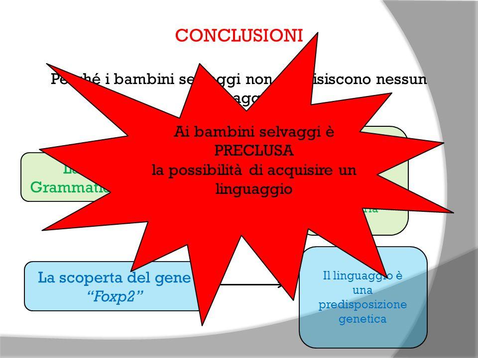 CONCLUSIONI Perché i bambini selvaggi non acquisiscono nessun linguaggio? La teoria della Grammatica Universale Bisogna entrare in contatto con la lin