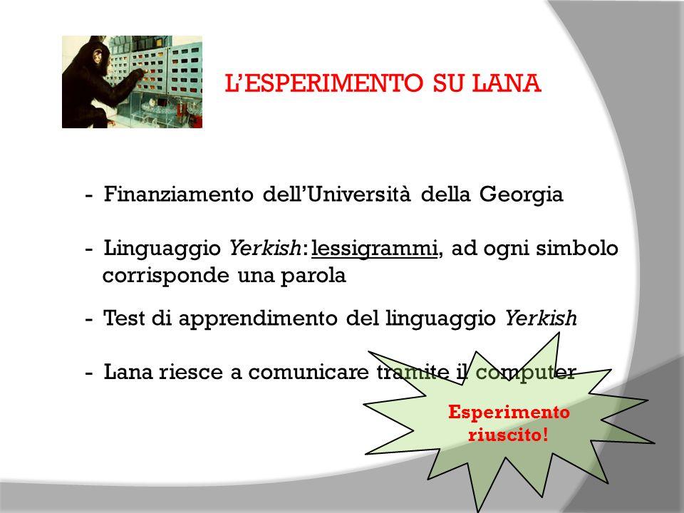 LESPERIMENTO SU LANA - Finanziamento dellUniversità della Georgia - Linguaggio Yerkish: lessigrammi, ad ogni simbolo corrisponde una parola - Test di