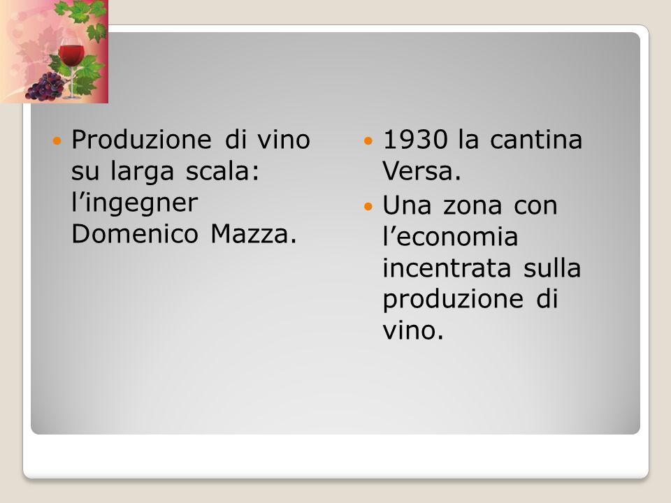 Produzione di vino su larga scala: lingegner Domenico Mazza. 1930 la cantina Versa. Una zona con leconomia incentrata sulla produzione di vino.