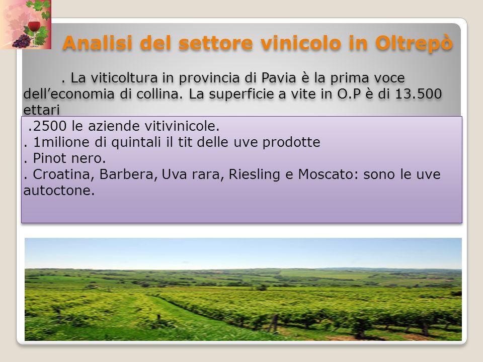 Analisi del settore vinicolo in Oltrepò. La viticoltura in provincia di Pavia è la prima voce delleconomia di collina. La superficie a vite in O.P è d