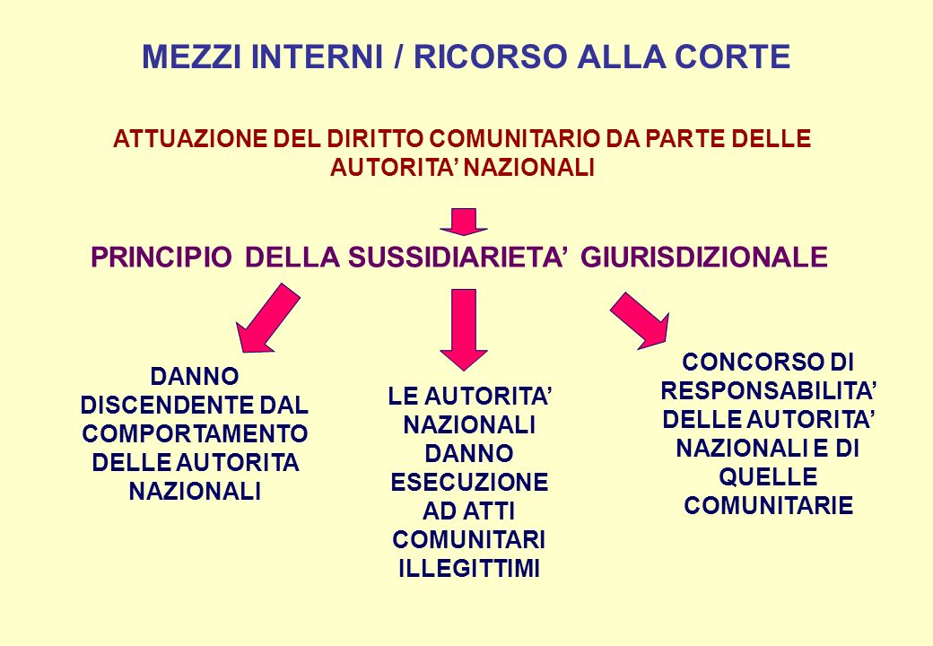MEZZI INTERNI / RICORSO ALLA CORTE PRINCIPIO DELLA SUSSIDIARIETA GIURISDIZIONALE DANNO DISCENDENTE DAL COMPORTAMENTO DELLE AUTORITA NAZIONALI LE AUTOR