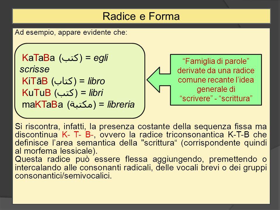 Ad esempio, appare evidente che: Si riscontra, infatti, la presenza costante della sequenza fissa ma discontinua K- T- B-, ovvero la radice triconsona