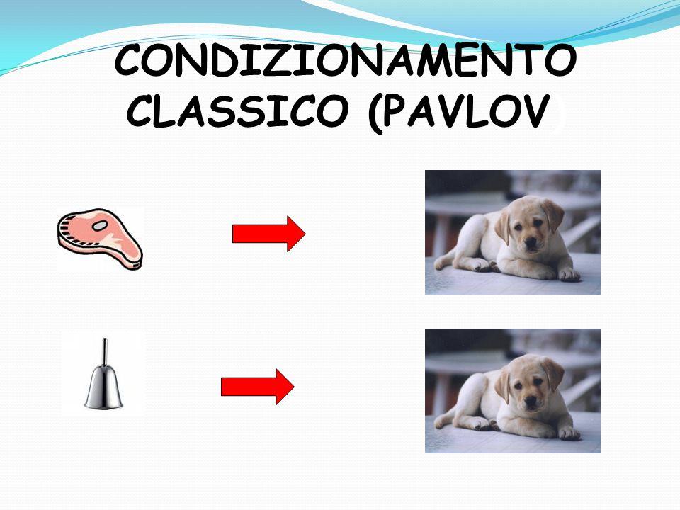 CONDIZIONAMENTO CLASSICO (PAVLOV)