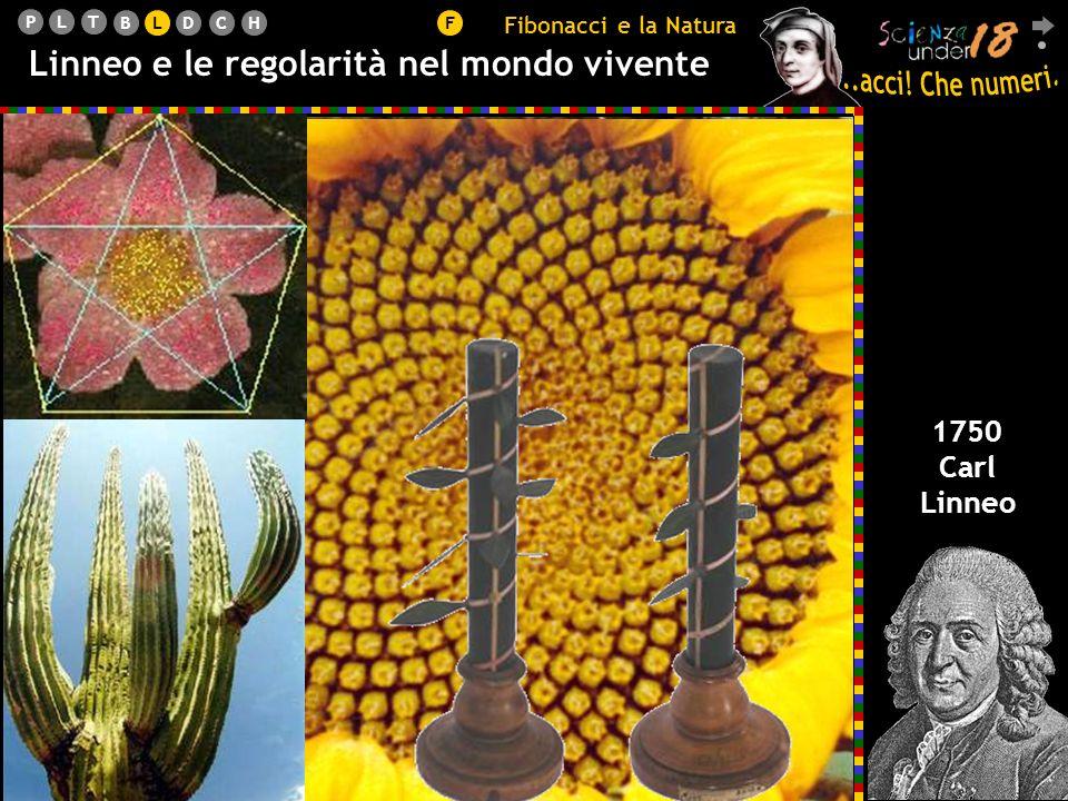 PLT BLDCHF Linneo e le regolarità nel mondo vivente 1750 Carl Linneo Fibonacci e la Natura L