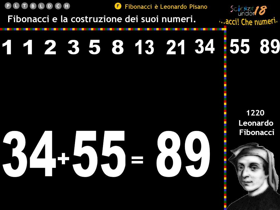 PLT BLDCHF Fibonacci e la costruzione dei suoi numeri.