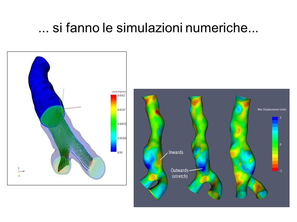 ... si fanno le simulazioni numeriche...