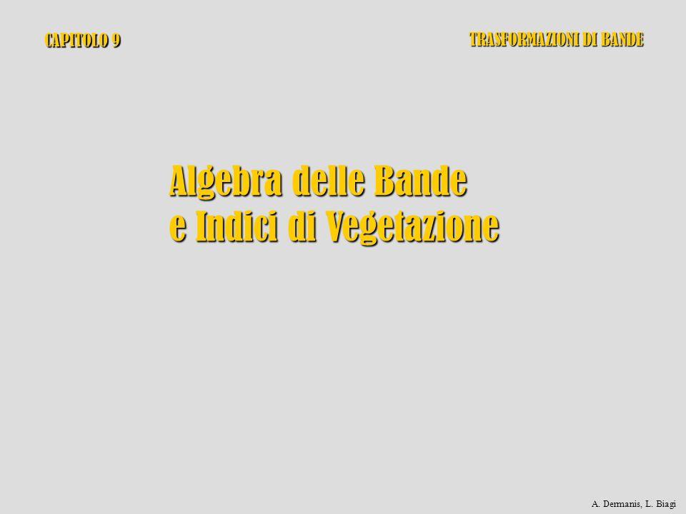 CAPITOLO 9 Algebra delle Bande e Indici di Vegetazione TRASFORMAZIONI DI BANDE A. Dermanis, L. Biagi