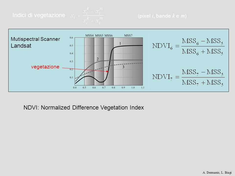 Indici di vegetazione Mutispectral Scanner Landsat (pixel i, bande k e m ) vegetazione NDVI: Normalized Difference Vegetation Index A. Dermanis, L. Bi