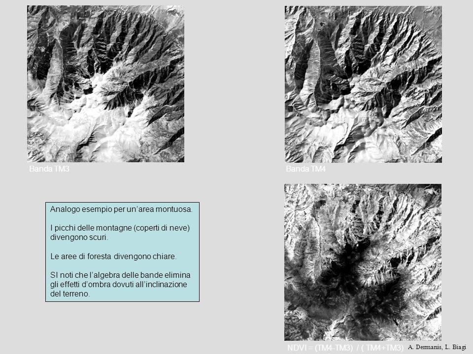 Banda TM3Banda TM4 NDVI = (TM4-TM3) / ( TM4+TM3) Analogo esempio per unarea montuosa. I picchi delle montagne (coperti di neve) divengono scuri. Le ar