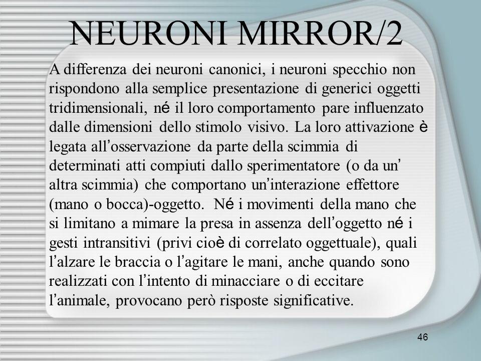 46 NEURONI MIRROR/2 A differenza dei neuroni canonici, i neuroni specchio non rispondono alla semplice presentazione di generici oggetti tridimensiona