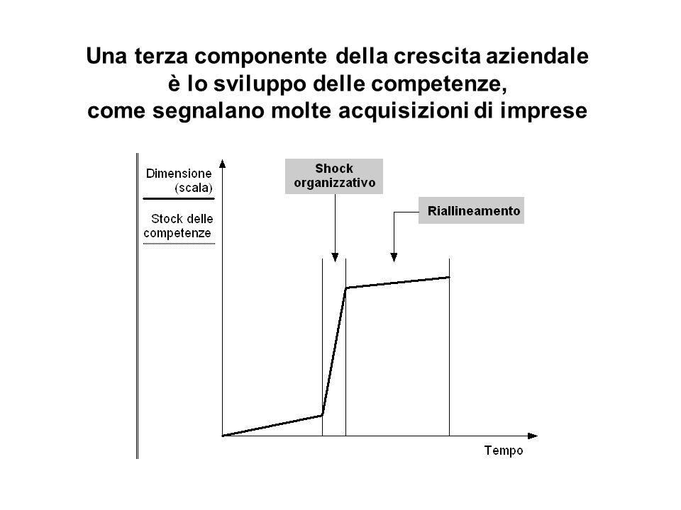 Una terza componente della crescita aziendale è lo sviluppo delle competenze, come segnalano molte acquisizioni di imprese