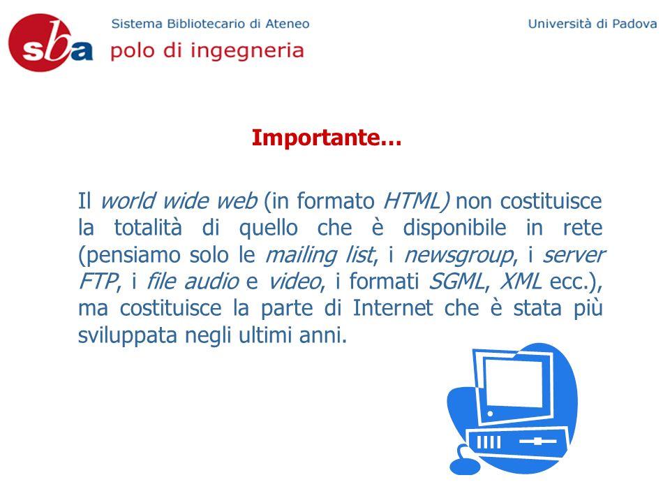 Importante… Il world wide web (in formato HTML) non costituisce la totalità di quello che è disponibile in rete (pensiamo solo le mailing list, i newsgroup, i server FTP, i file audio e video, i formati SGML, XML ecc.), ma costituisce la parte di Internet che è stata più sviluppata negli ultimi anni.