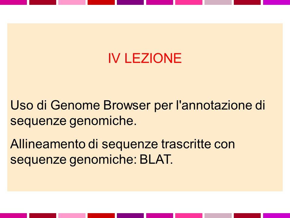 IV LEZIONE Uso di Genome Browser per l'annotazione di sequenze genomiche. Allineamento di sequenze trascritte con sequenze genomiche: BLAT.