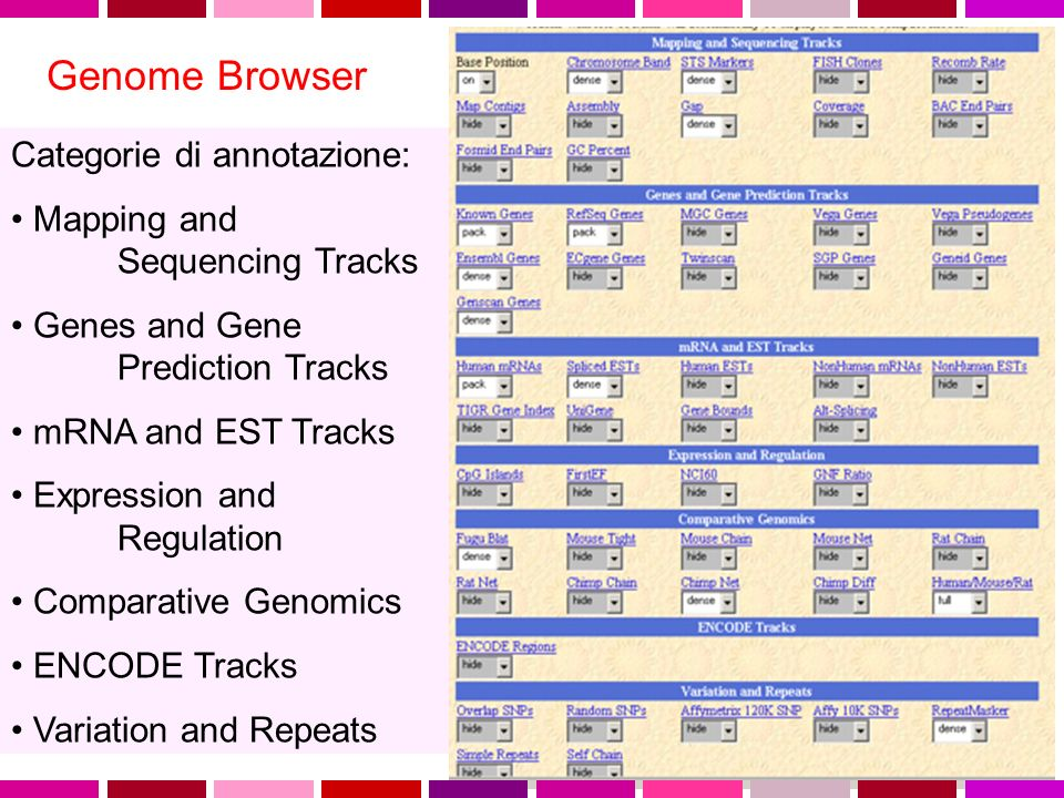 Categorie di annotazione: Mapping and Sequencing Tracks Genes and Gene Prediction Tracks mRNA and EST Tracks Expression and Regulation Comparative Genomics ENCODE Tracks Variation and Repeats Genome Browser