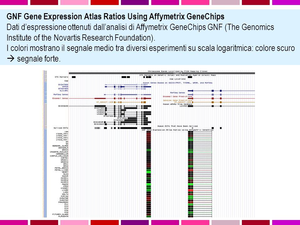 GNF Gene Expression Atlas Ratios Using Affymetrix GeneChips Dati despressione ottenuti dallanalisi di Affymetrix GeneChips GNF (The Genomics Institute of the Novartis Research Foundation).