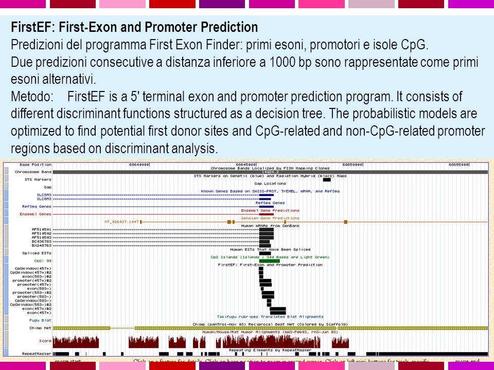 FirstEF: First-Exon and Promoter Prediction Predizioni del programma First Exon Finder: primi esoni, promotori e isole CpG. Due predizioni consecutive