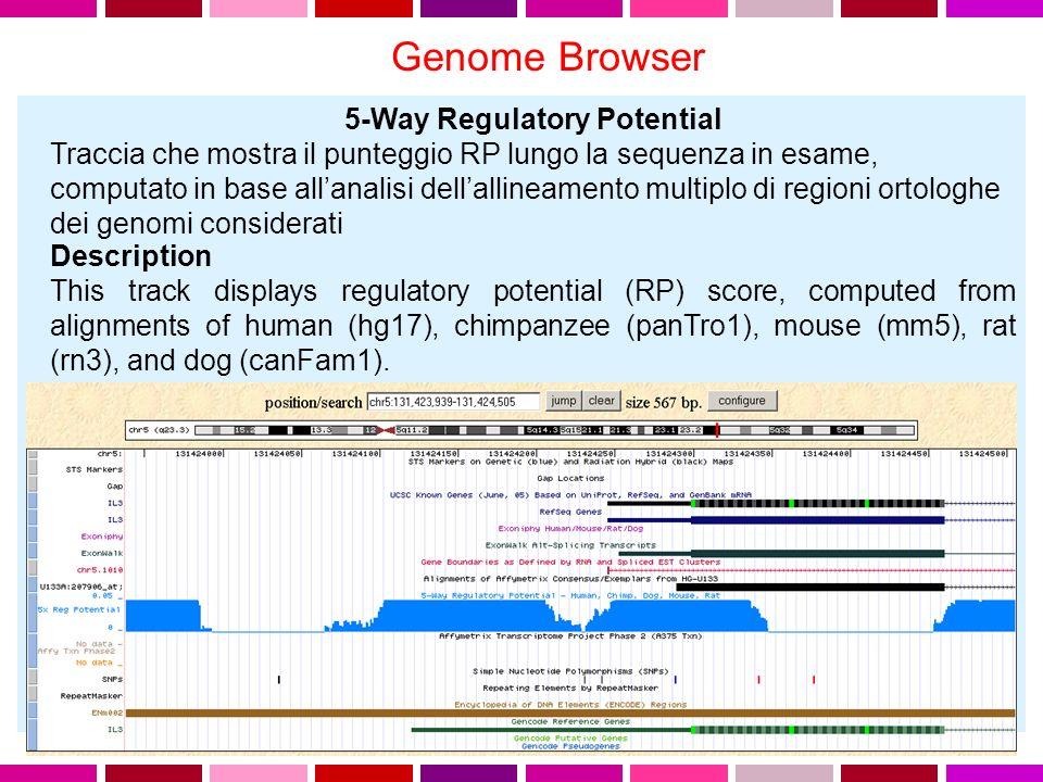 Genome Browser 5-Way Regulatory Potential Traccia che mostra il punteggio RP lungo la sequenza in esame, computato in base allanalisi dellallineamento multiplo di regioni ortologhe dei genomi considerati Description This track displays regulatory potential (RP) score, computed from alignments of human (hg17), chimpanzee (panTro1), mouse (mm5), rat (rn3), and dog (canFam1).