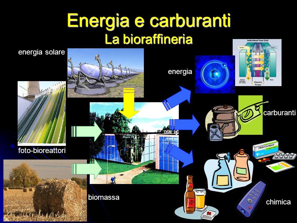 Energia e carburanti La bioraffineria energia carburanti chimica biomassa foto-bioreattori energia solare
