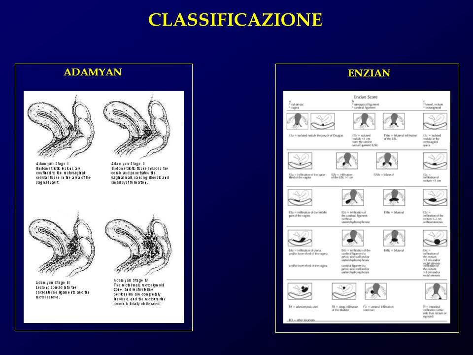 CLASSIFICAZIONE ADAMYAN ENZIAN