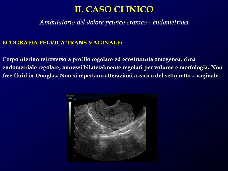 IL CASO CLINICO Ambulatorio del dolore pelvico cronico - endometriosi ECOGRAFIA PELVICA TRANS VAGINALE: Corpo uterino retroverso a profilo regolare ed
