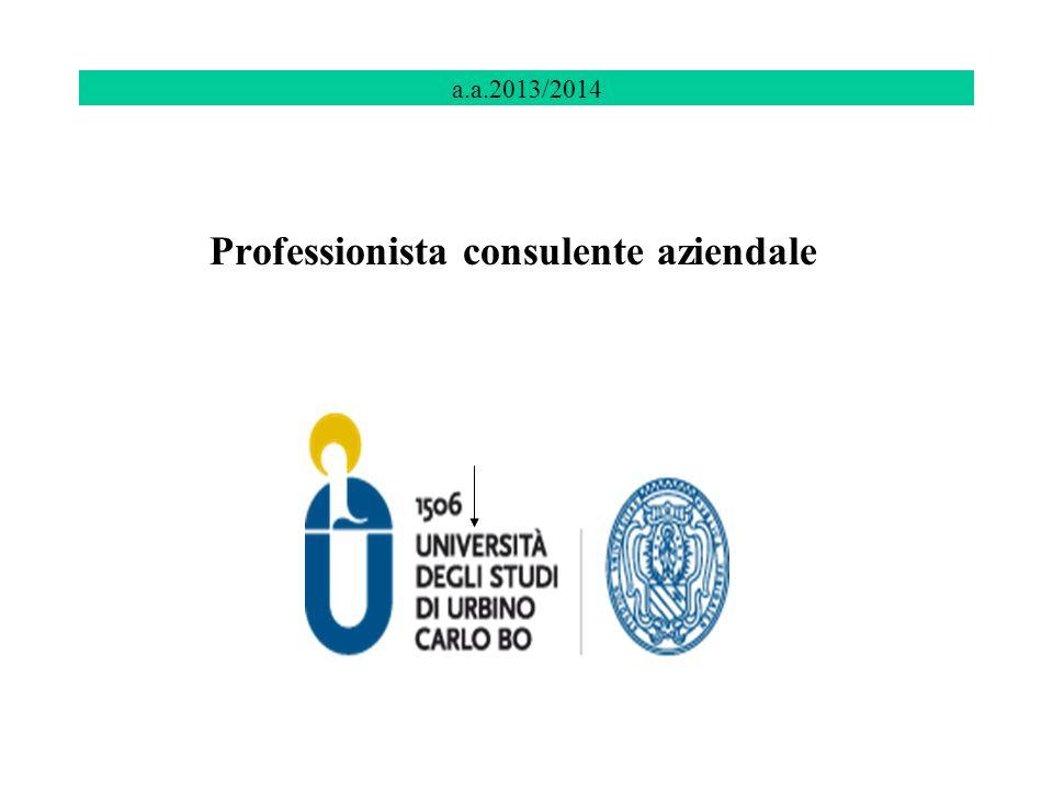 a.a.2013/2014 Professionista consulente aziendale