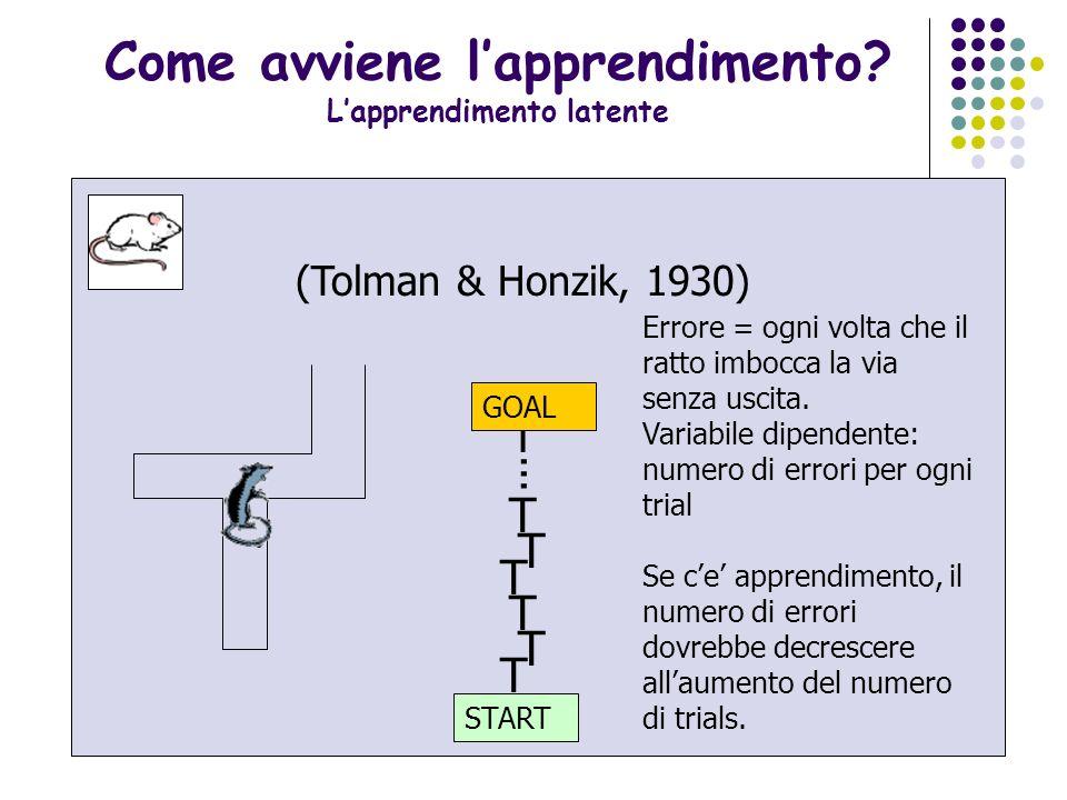 23 Apprendimento latente: un esperimento classico (Tolman & Honzik, 1930) T START T T T i T T... GOAL Quando il ratto raggiunge la biforcazione della