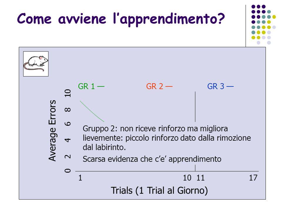26 1 10 11 17 Trials (1 Trial al Giorno) Average Errors 0 2 4 6 8 10 GR 1 GR 2 GR 3 Il calo degli errori e risultato di un cambiamento relativamente p