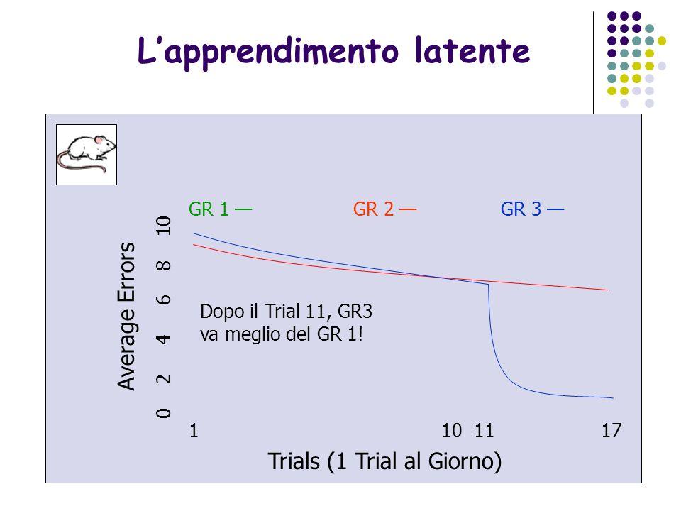 27 Come avviene lapprendimento? 1 10 11 17 Trials (1 Trial al Giorno) Average Errors 0 2 4 6 8 10 GR 1 GR 2 GR 3 Gruppo 2: non riceve rinforzo ma migl