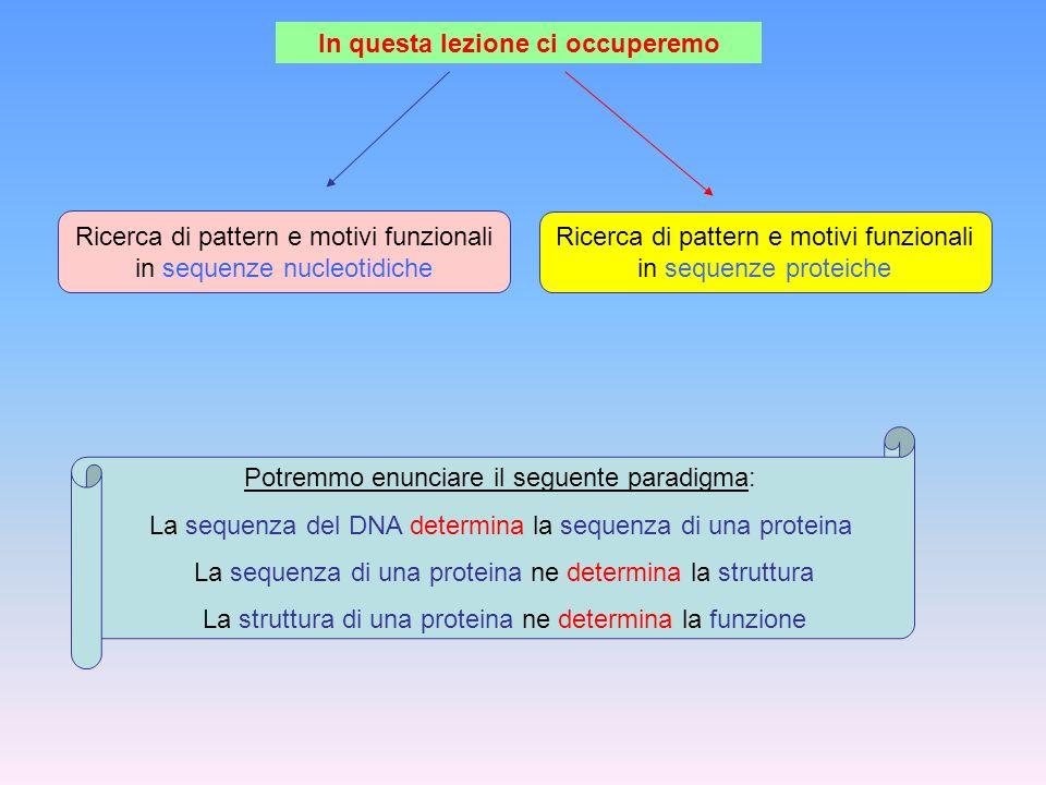 In questa lezione ci occuperemo Ricerca di pattern e motivi funzionali in sequenze nucleotidiche Ricerca di pattern e motivi funzionali in sequenze pr
