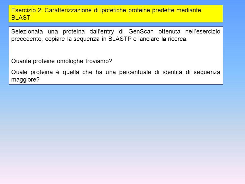 Esercizio 2: Caratterizzazione di ipotetiche proteine predette mediante BLAST Selezionata una proteina dallentry di GenScan ottenuta nellesercizio pre