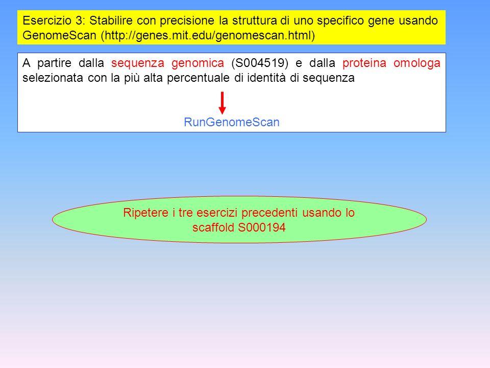 Esercizio 3: Stabilire con precisione la struttura di uno specifico gene usando GenomeScan (http://genes.mit.edu/genomescan.html) A partire dalla sequ